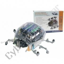 Kit didáctico Robot Joaninha Modelo KSR6