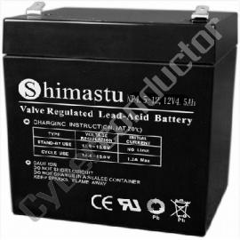Bateria Ácida SLA1245SHM